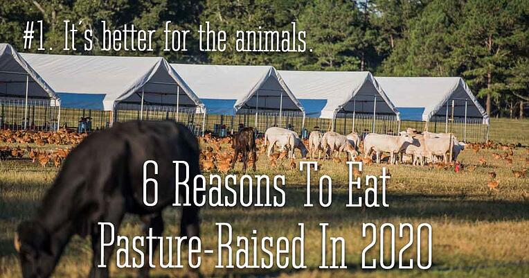 1-pasture-raised-better-for-animals_1200