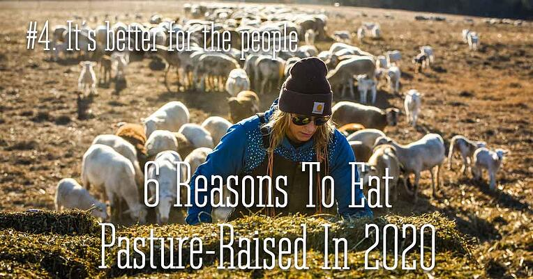 4-pasture-raised-better-for-people_1200