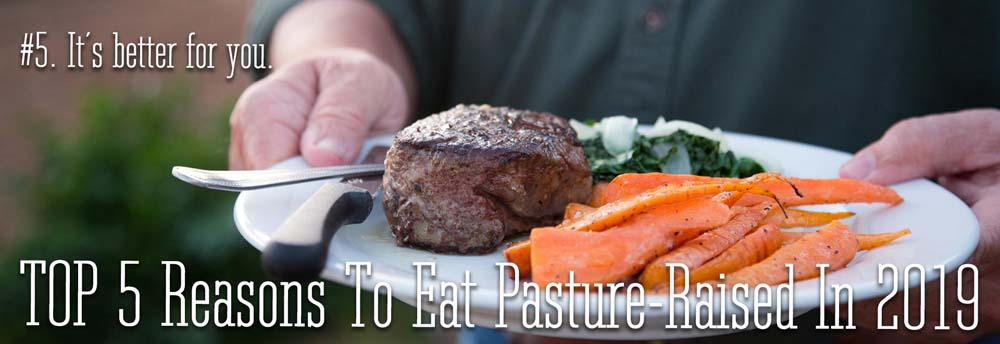 The #5 reason to eat pasture-raised in 2019. It is better for you..