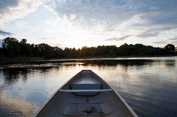 Canoe or kayak on our pond and enjoy the beauty of regenerative farming.