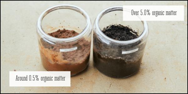 Carbon cycle organic matter soil