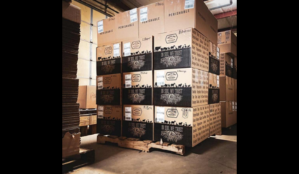 IFC Shipping Pallet 600