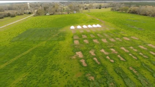 Pastured chicken houses leaving nitrogen heavy land