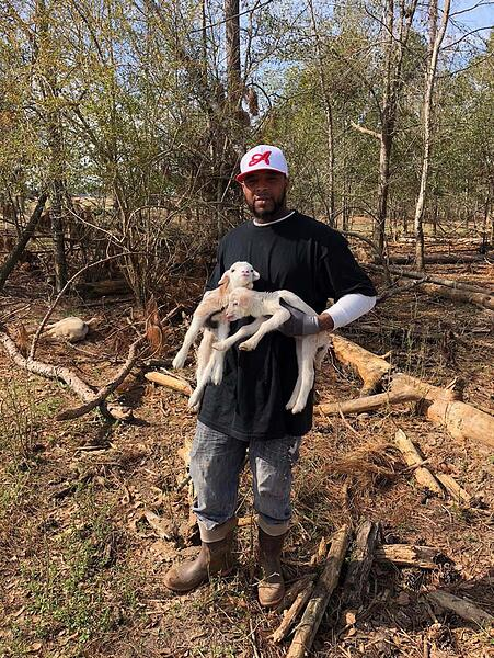 Jamaal Huff trains in the pasture raised hog, sheep, goat, and cattle departments.
