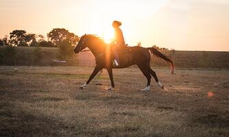 Jamie riding horse at sunset in pastures.jpg