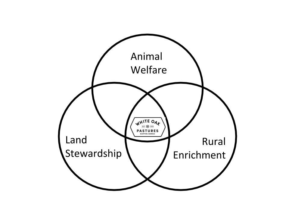 Venn-Diagram-LCA-2019-1