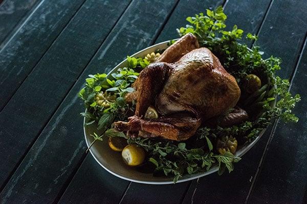 WOP-Thanksgiving-Turkey-600