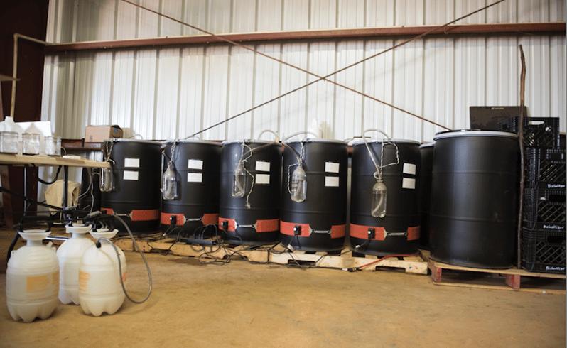 barrels-1.png