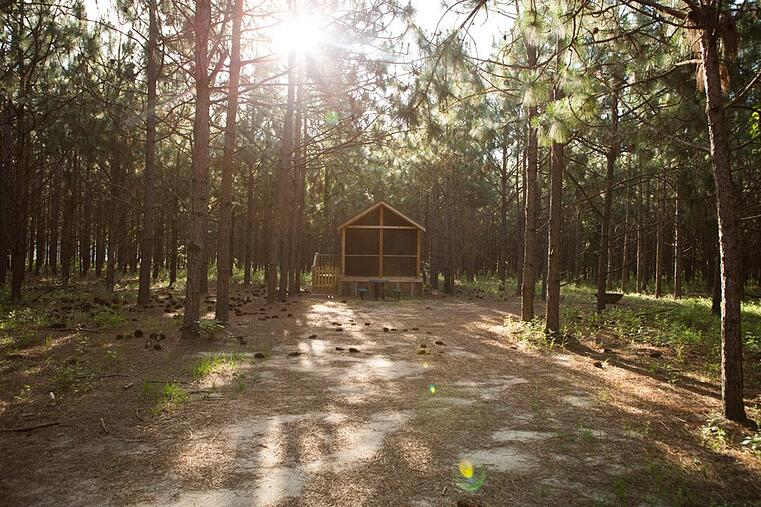 Rent the Woodland Cabin at White Oak Pastures