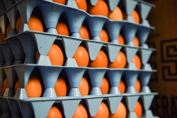 egg crates pasture raised eggs