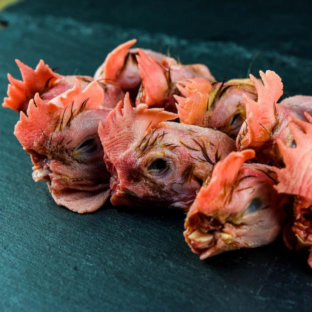 pastured_chicken_heads