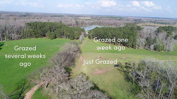 Aerial photo of the positive effects of livestock grazing and regenerative agriculture.