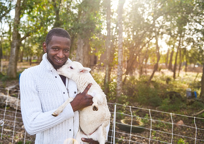 Chad holds one of the orphaned lambs located behind the General Store - Chads animal handling skills are always helpful on the farm