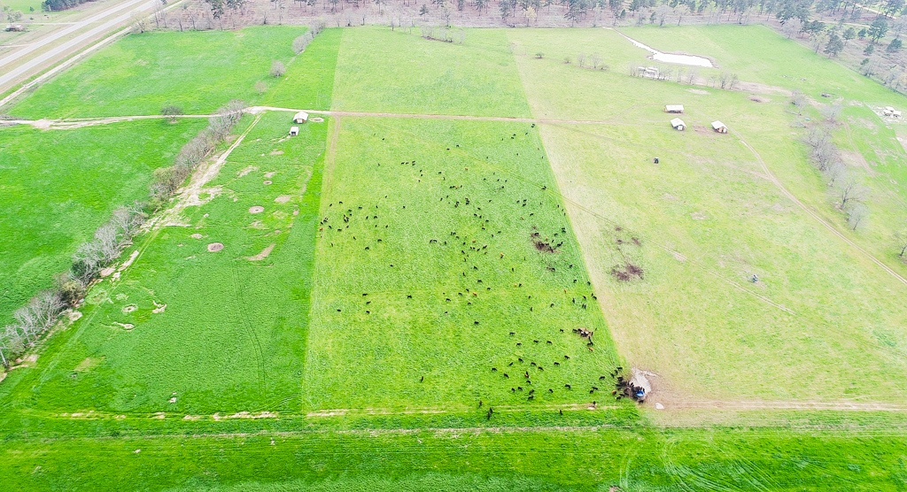 Aerial photo showing recently grazed pasture divided in thirds