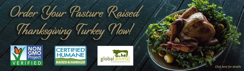 thanksgiving turkey banner-2.jpg