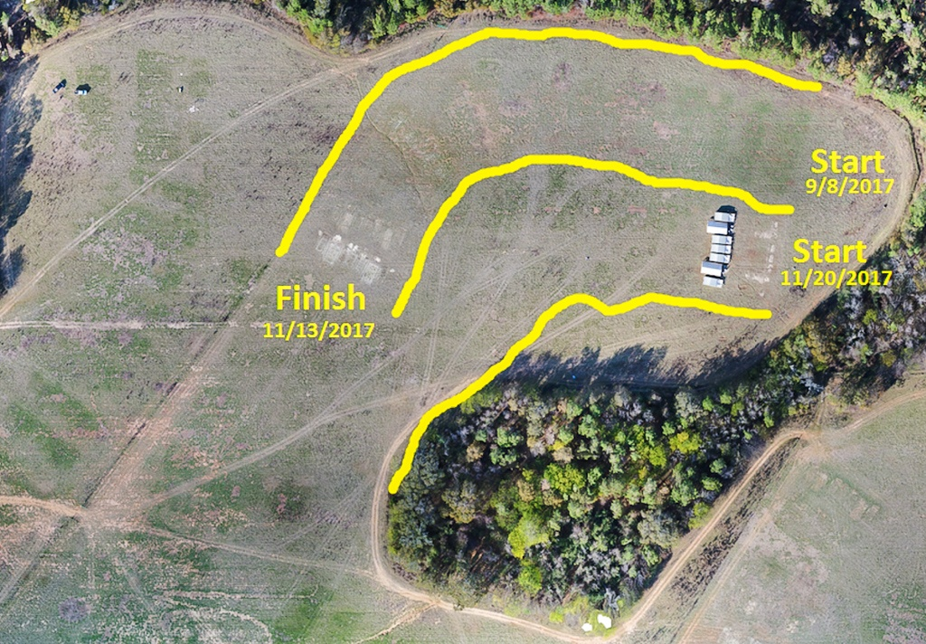 Planning to move turkeys using aerial images