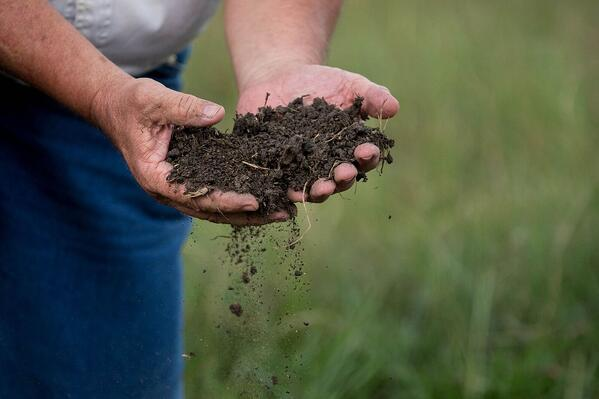 Regenerative farmer Will Harris inspects the soil at White Oak Pastures.