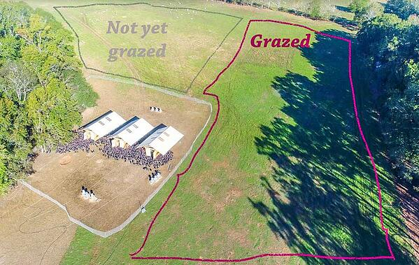 Land change over time comparing grazed not grazed pasture