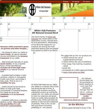 The earliest prototype of the White Oak Pastures website in 2005