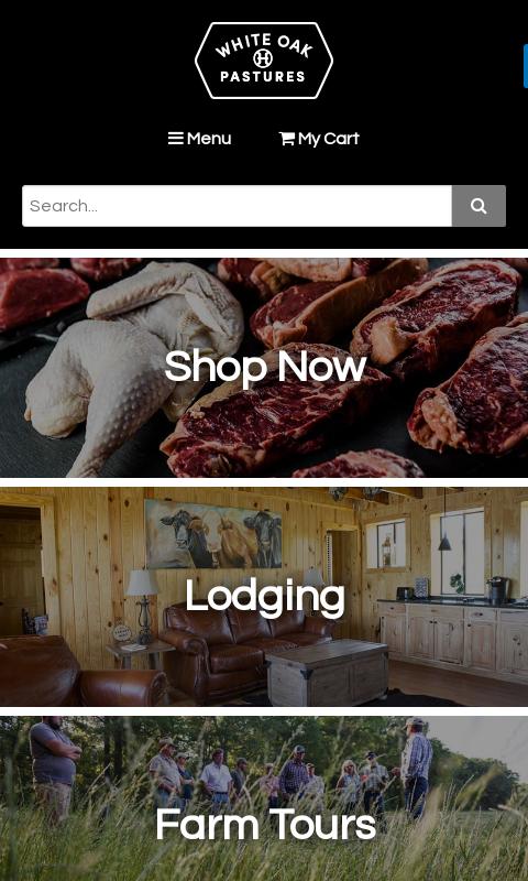 wop-mobile-website-2018
