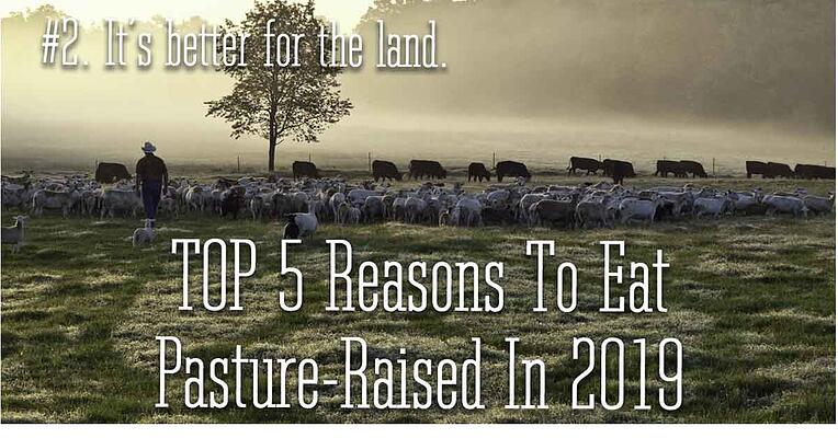Reason 2 to eat pasture raised in 2019. It is better for the land.