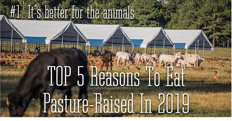 Reason 1 to eat pasture raised in 2019. It is better for the animals.