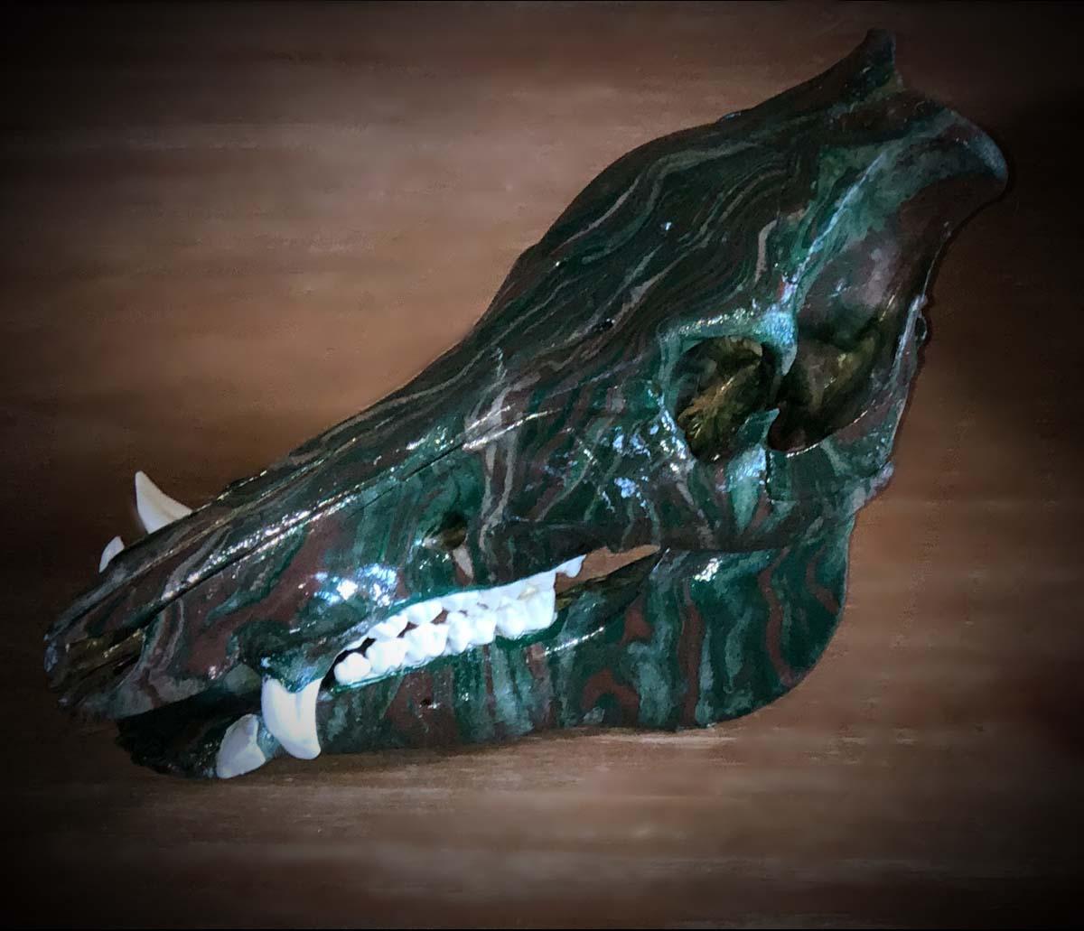 Denna-Peterson-Dinosaur-Ram-Skull